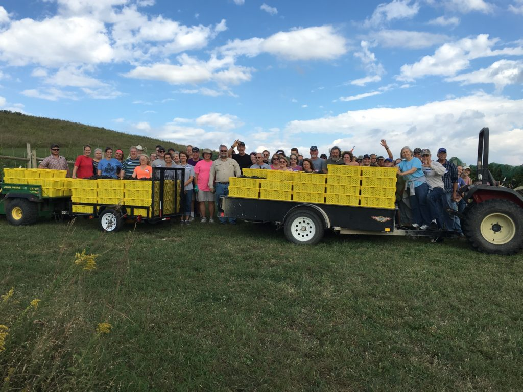 Prairie Fire Winery Harvest Crew